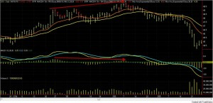 macd_histogram_divergence_c_daily_arrows